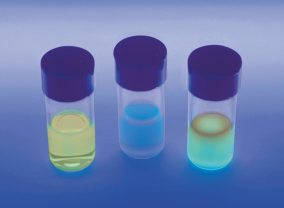 Easily test any water source for the presence of contaminating E. coli bacteria. ©Edvotek 2014