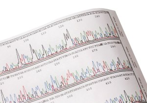 Analyze DNA sequences in your classroom! © Edvotek 2014
