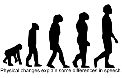 NEWS_3.9.15_Evolution_Fig2.jpg